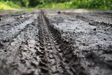 Muddy Bike Trail Leading Towar...