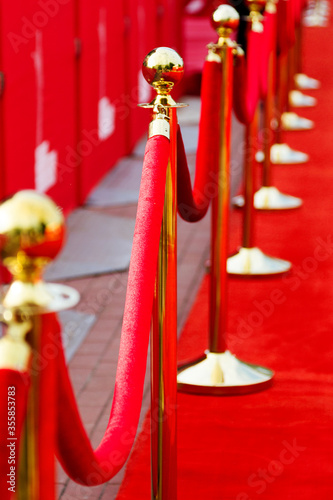 Way to success on the red carpet (Barrier rope) Poster Mural XXL