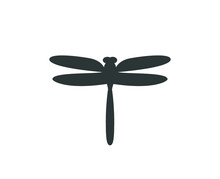 Dragonfly Icon.  Isolated Drag...