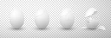 Eggs Whole, Broken Realistic S...
