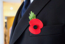 Red Poppy Pinned On To Suit Jacket - Remembrance Day