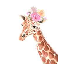 Cute Giraffe With A Bouquet Of...