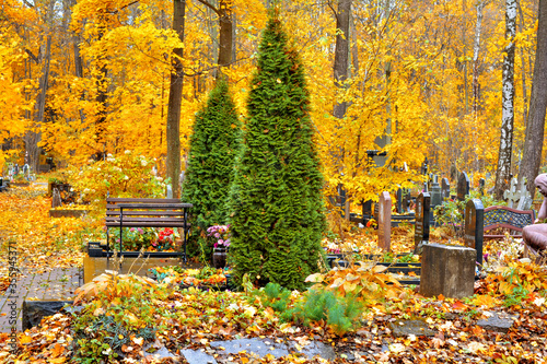 Obraz Autumn alley withfallen leaves of ancient Christian cemetery landscape view - fototapety do salonu