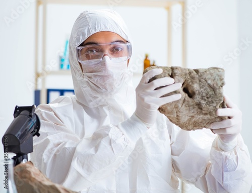 Photo Scientist looking and stone samples in lab