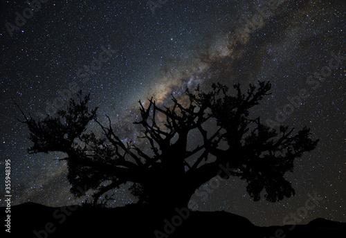 Fotomural Nocne niebo pełne gwiazd z widocznym naszej galaktyki centrum Drogi Mlecznej i d