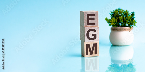 Photo EGM - Extraordinary general meeting - acronym on wooden cubes on blue backround