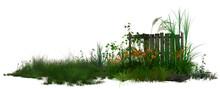 3D Rendering Of Grasses Flower...