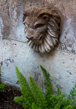 Stone Lion Head On Wall With G...
