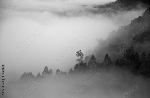 Fototapeta Neblina no vale