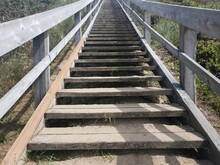 Wooden Stairs Going Up Hill Wi...