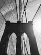 New York / Central Park / Manhattan / Autumn / Sun / Sunset / Street / eua / travel / happy / Building / skyline / people / lights