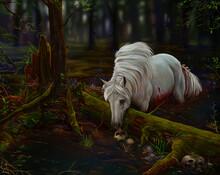 Kelpie Horse