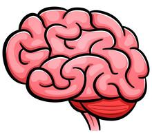 Vector Human Brain Cartoon Iso...