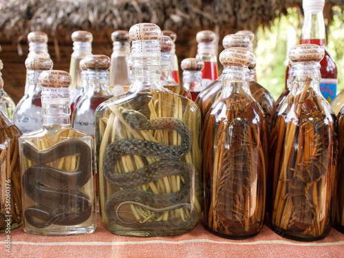 snake wine or bottles of lao lao rice whiskey with snakes or centipede sold as s Canvas Print