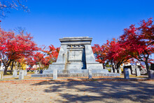 Autumn In Iwate Park, Morioka ...