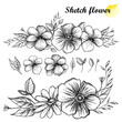 Set of hand drawn sketch of flower horizontal garland with bud and leaf in black isolated on white background.