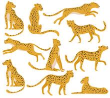 Wild Leopard Set. Running, Jum...