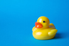 Yellow Rubber Toy Duck On Blue...