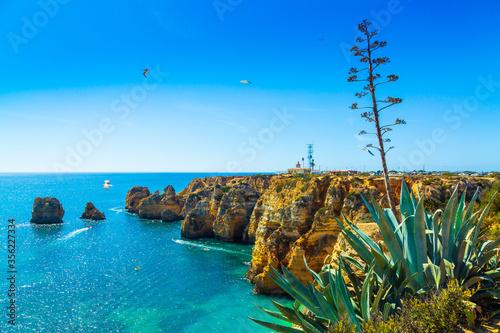 Fototapeta Amazing cliffs above Algarve coastline and agave succulent plant neer Lagos city in Portugal, Europe obraz