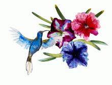 Abstract Watercolor Painting O...
