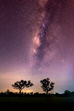 Milky Way And Tree On The Hill...