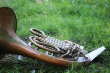 Old French Horn On Grass