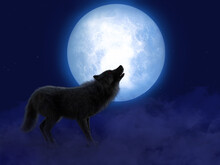 3D Rendering Of Black Wolf Wit...