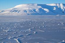 "Sea Ice Layer In ""Billefjord"" ..."