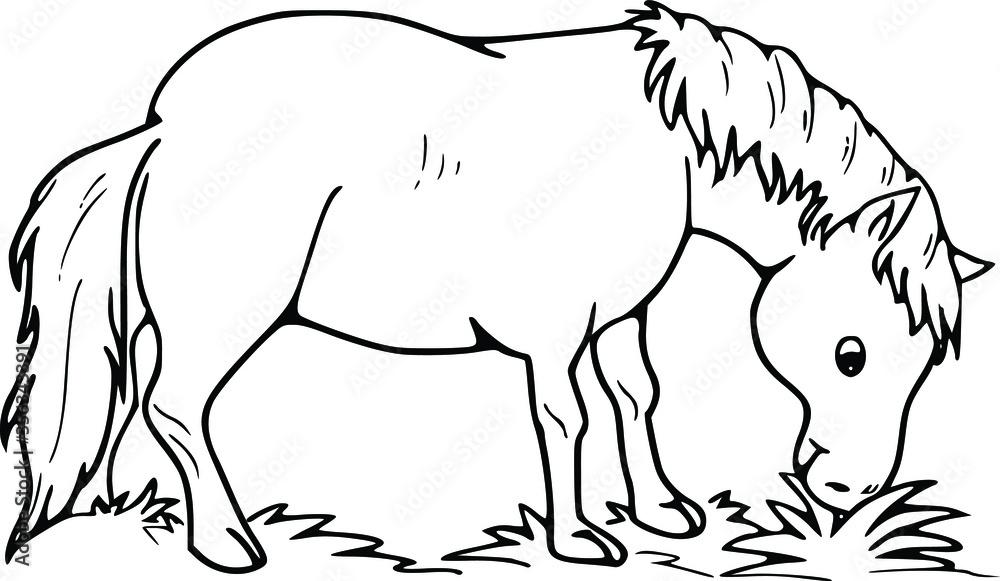 Fototapeta cartoon vector drawing horse eating grass