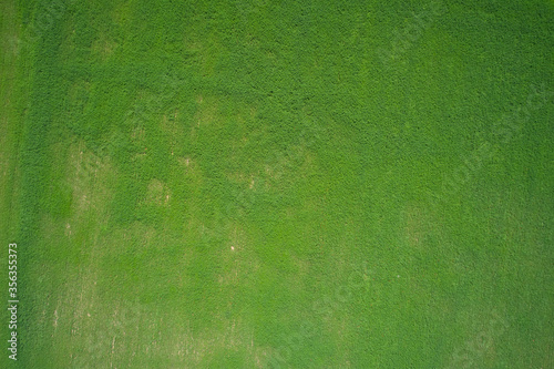 Green grass aerial view high altitude Canvas Print