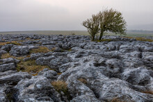 Beautiful Craggy Mountain Landscape With Sparse Trees In The Yorkshire Dales