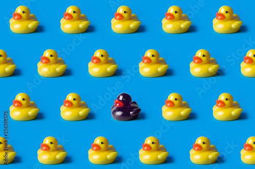 Fototapeta black duck surrounded by yellow ducks. Black lives matter