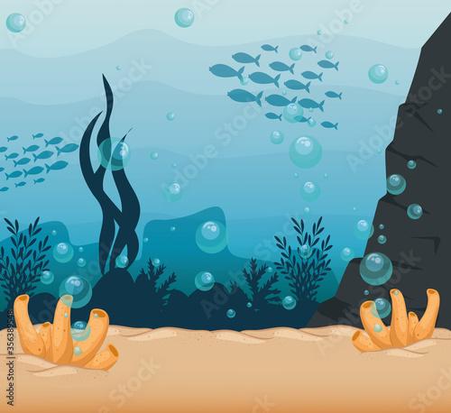 underwater background, undersea reef, ocean with marine algae scene, habitat mar Fototapeta