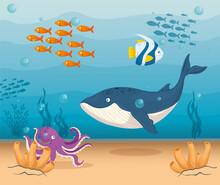 Blue Whale Marine Animal In Ocean, With Ornamental Fishes And Octopus , Sea World Dwellers, Cute Underwater Creatures,habitat Marine Vector Illustration Design