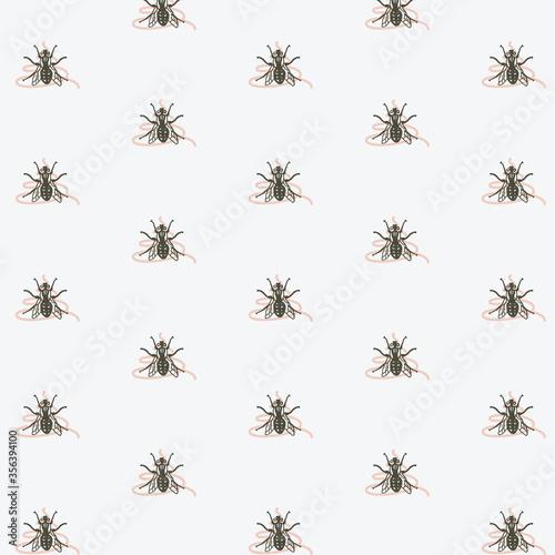 Fotografia, Obraz Fly on crap pattern