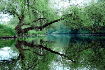 Reflection of green trees and banks in a calm river in the summer. River rafting in summer. Packrafting in wilderness.