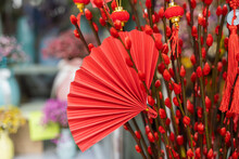Tradition Fan And Lantern Of C...