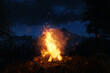 canvas print picture 3d rendering of big bonfire with sparks and particles in front of foggy mountain and conifer trees