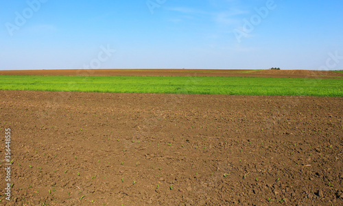 Obraz Plowed field in spring time with blue sky - fototapety do salonu