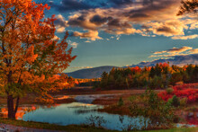 Afternoon In Acadia National P...
