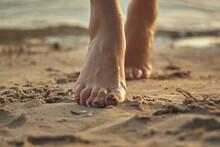 Female Feet Barefoot On A Sand...