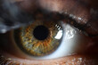 Leinwandbild Motiv Human green eye retina supermacro closeup background. Check vision concept
