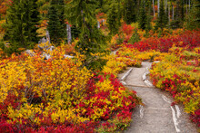 Stunning Fall Foliage Along A ...