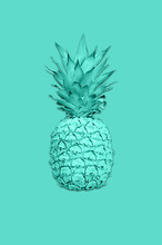Collage With Ananas In Vibrant...