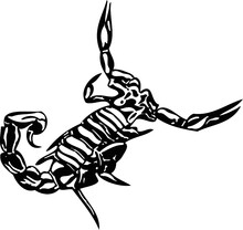 Predatory Insects Vector