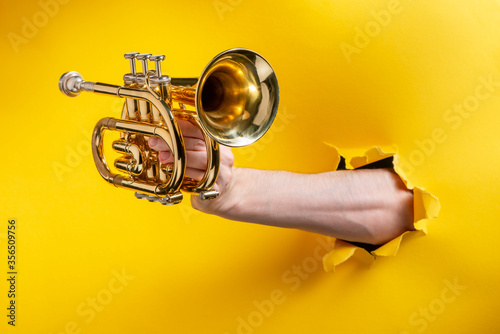 Hand showing a pocket trumpet through a torn hole in yellow paper background Canvas