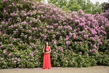 Girl In Red Dress Dreaming And Standing In Front Of Purple Rhododendron Bush