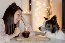 Side View Of Delighted Female Sitting At Table With Muffin And Celebrating Birthday Together With Border Collie While Staying Home During Quarantine