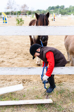 Side View Of Little Boy Tying Reins Of Brown Pony Horse To Paddock Barrier During Training In Equestrian School