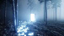 Glowing Butterflies In Fog Night Forest. Light Portal Door. Mistic And Magic Concept.3d Render.